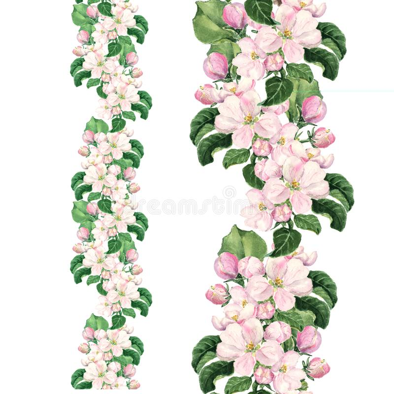Apple pink flowers. Seamless floral border. Botanical watercolour painted edging.  stock photography