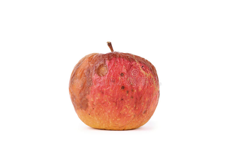 Apple podre isolado no fundo branco fotografia de stock