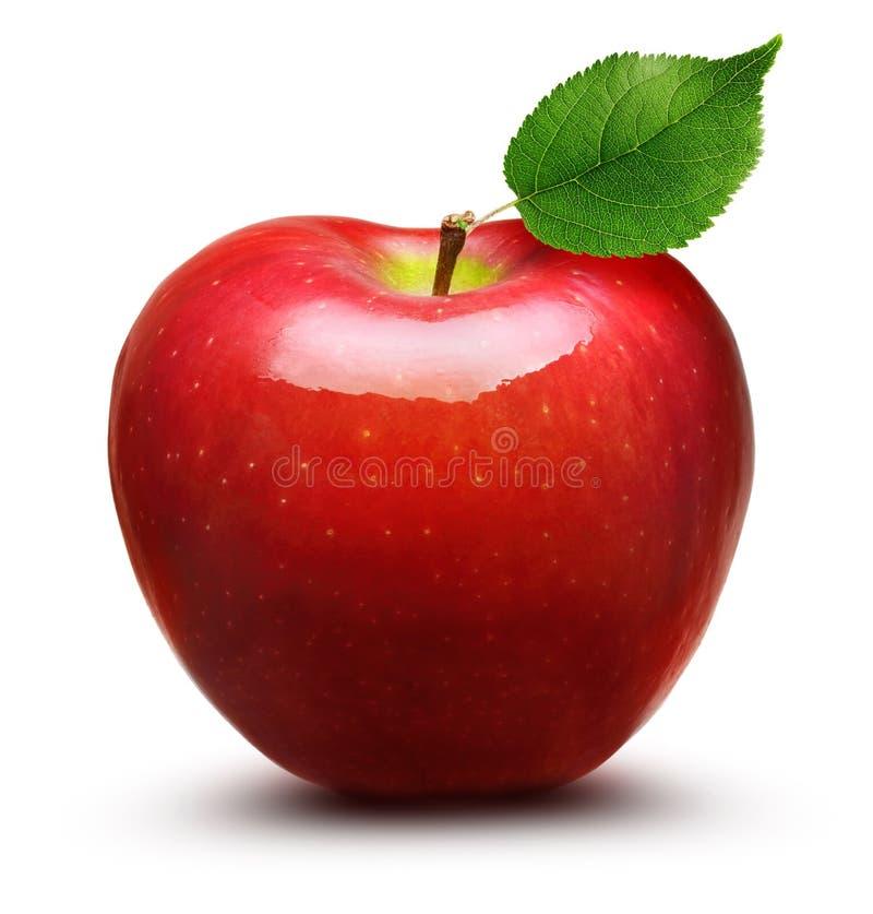 Apple portent des fruits d'isolement photographie stock