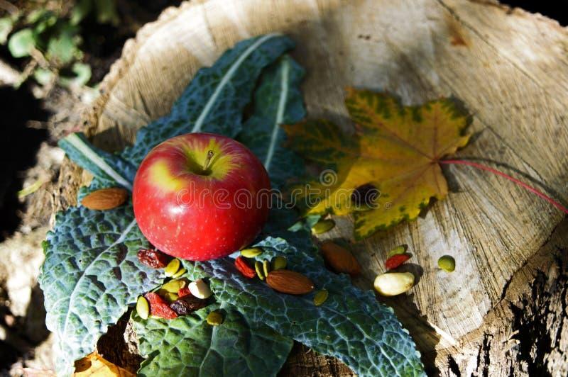 Apple rojo en la col rizada con Berry Nuts Fall Background sano imágenes de archivo libres de regalías