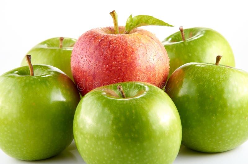 Apple rojo y verde imagen de archivo libre de regalías
