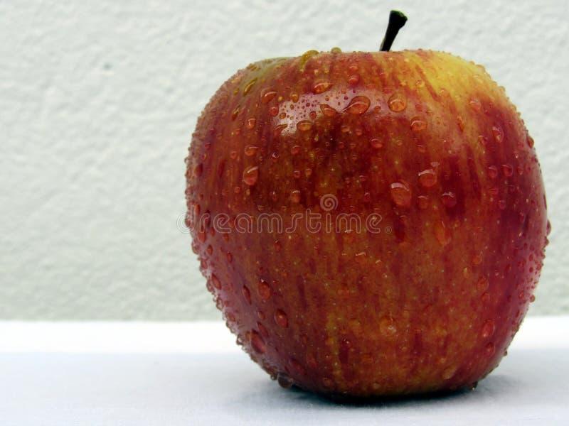 Apple rosso bagnato fotografia stock libera da diritti