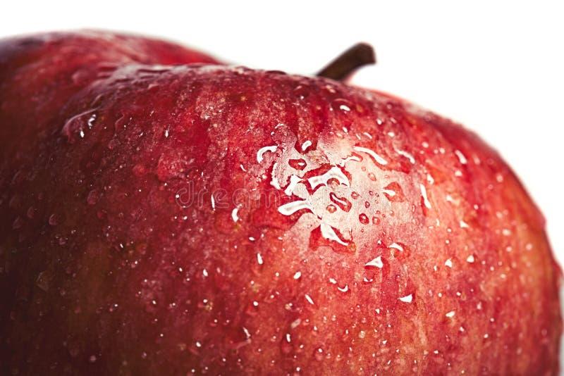 Apple rosso bagnato con la macro del primo piano del colpo delle goccioline fotografia stock libera da diritti