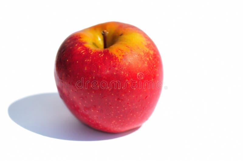 Apple rosso fresco fotografie stock libere da diritti