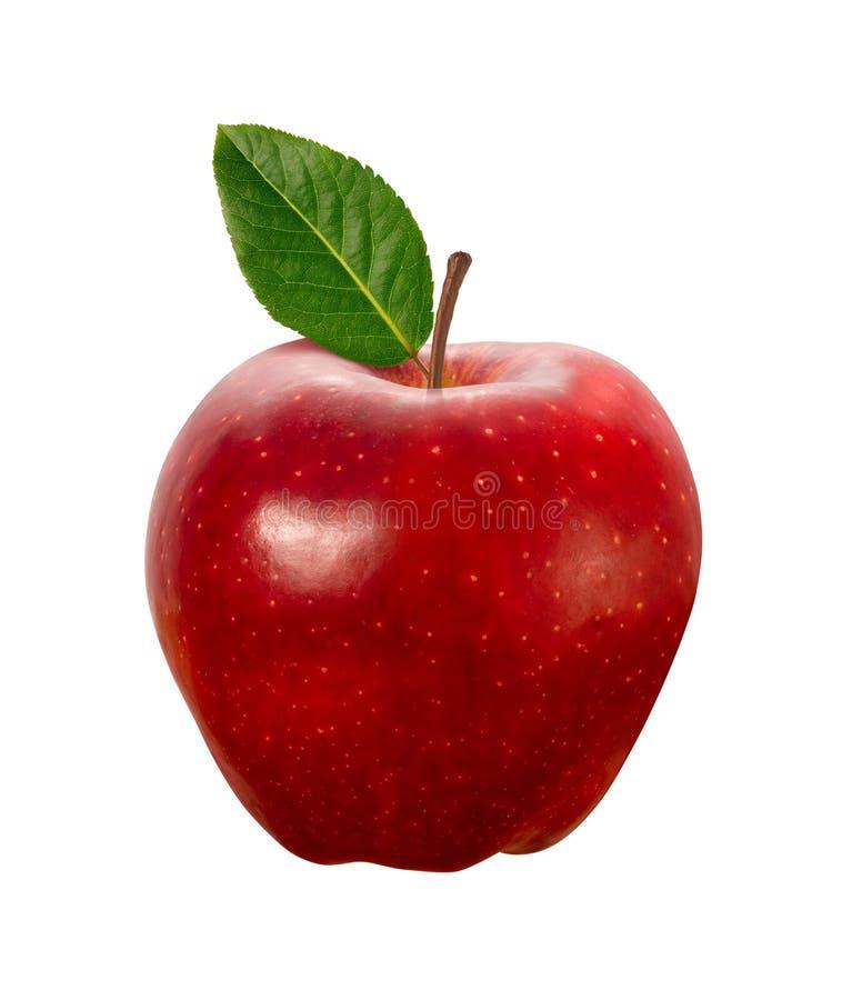 Apple rosso isolato con il percorso di residuo della potatura meccanica immagini stock
