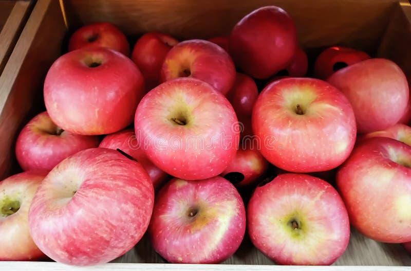 Apple rosso la grande palla di fresco fotografia stock libera da diritti