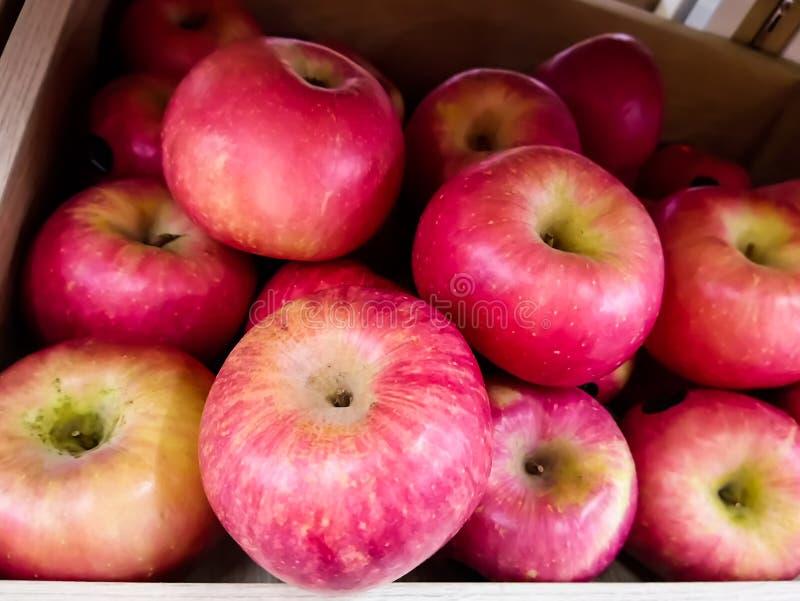 Apple rosso la grande palla di fresco fotografie stock