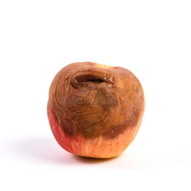 Apple rot on a white royalty free stock photo