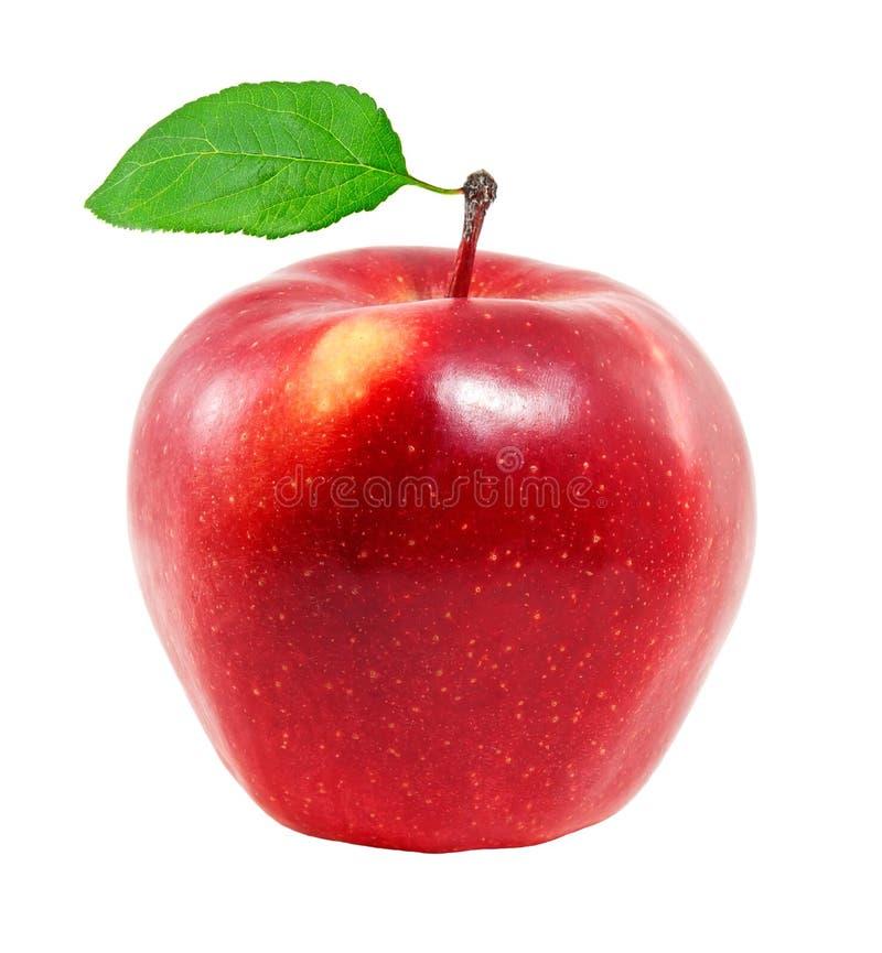 Apple rouge frais image libre de droits