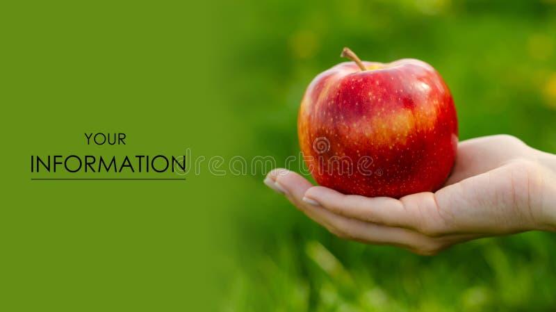 Apple sae à disposição árvores do teste padrão verde da natureza do sol imagem de stock royalty free