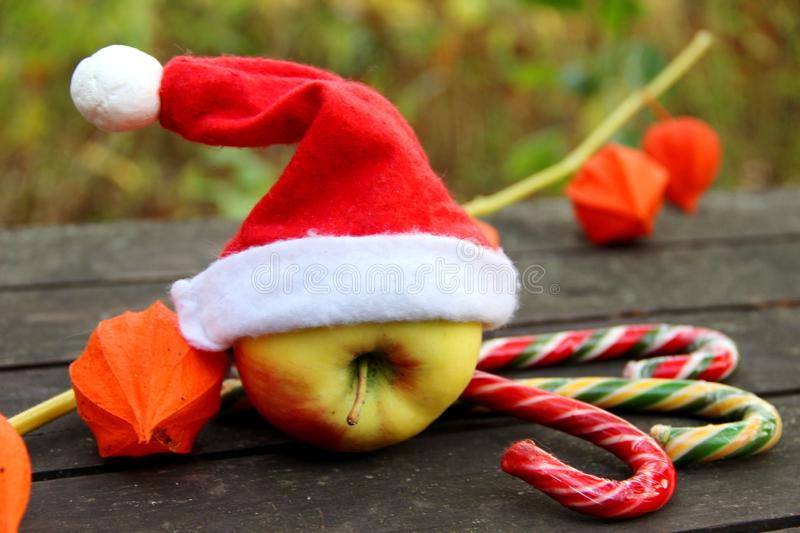 An Apple in a Santa Claus hat, three colorful caramel canes on a brown background. orange flowers of physalis stock photos