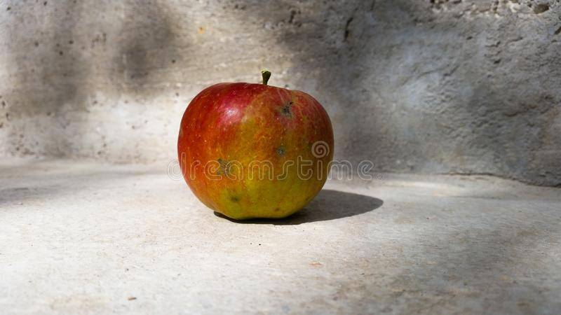 An apple with a shadow royalty free stock images