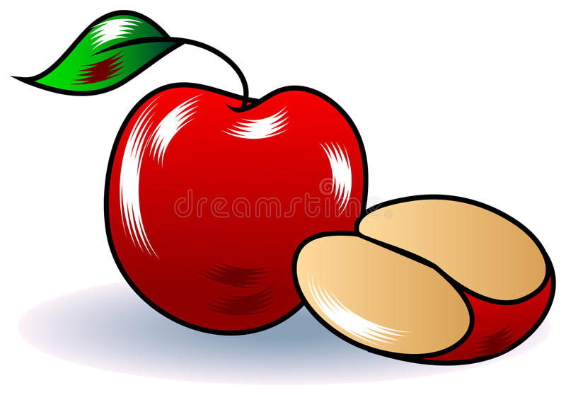 Apple with slice royalty free illustration