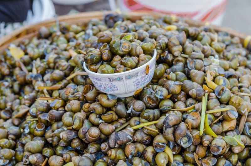 Apple Snail på rea i Thailand öppen maket royaltyfri bild