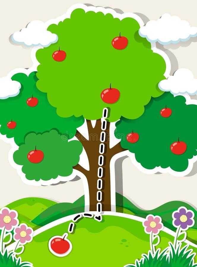 Apple som faller från ett träd vektor illustrationer