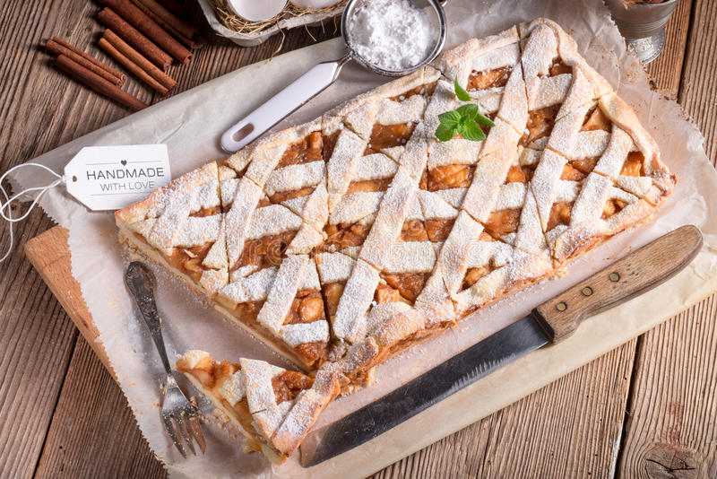 Apple strudel. A fresh and tasty apple strudel stock image