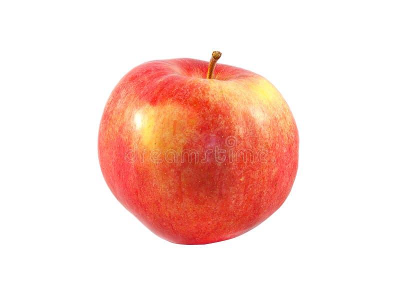 Apple studiofoto royaltyfri bild
