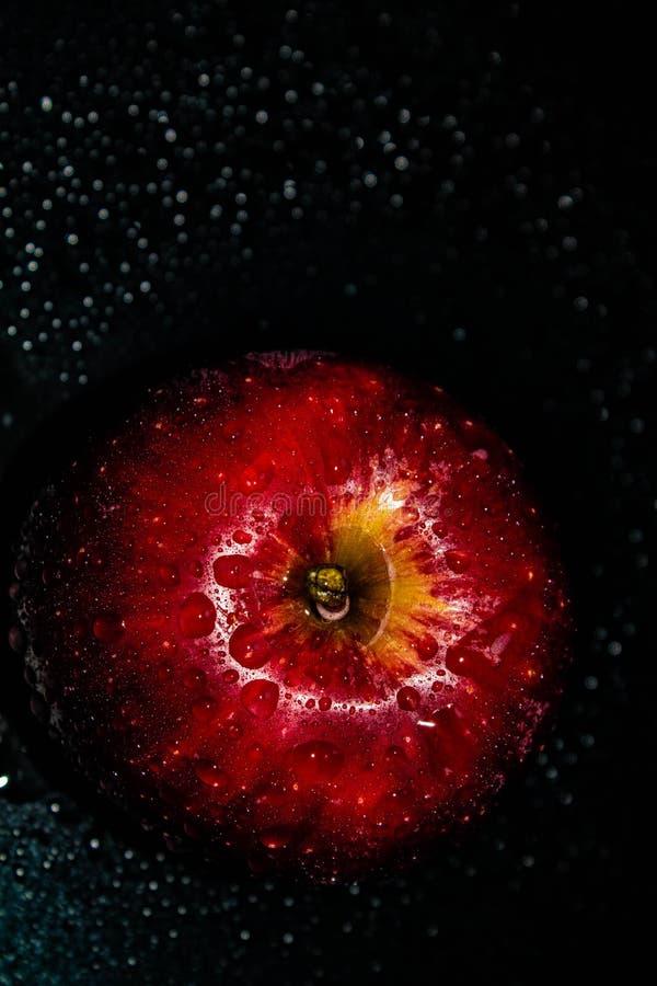 Apple sur le fond noir et blanc, fruit, Apple rouge, Apple vert photos libres de droits