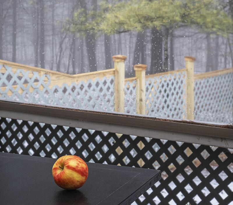 Apple on table in screened porch royalty free stock images