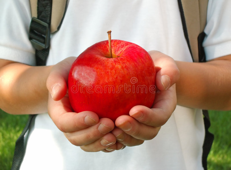 Apple for the teacher royalty free stock images
