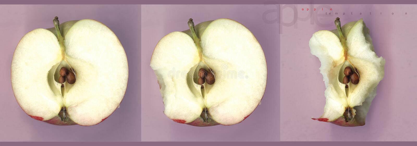 Download Apple Temptation stock image. Image of apple, seeds, healthy - 198797