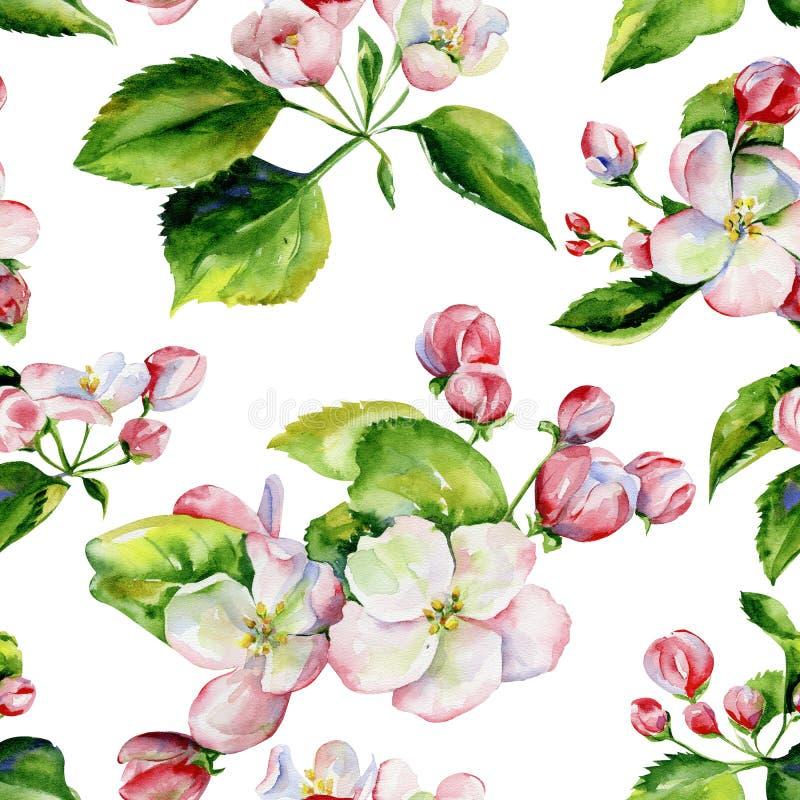 Apple trädfilialer och sömlös modell för blommor royaltyfri illustrationer