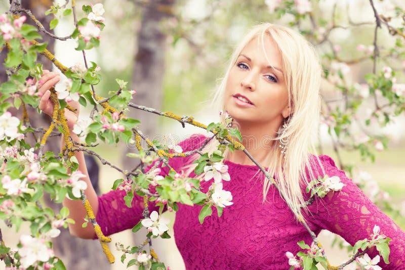 Download Apple tree stock image. Image of female, looking, hair - 28533219