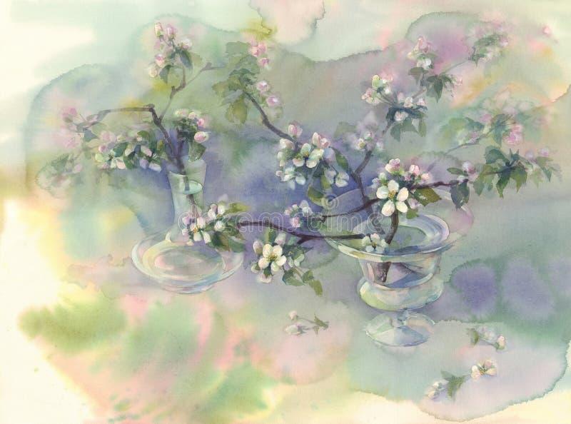 Apple tree bloom watercolor stock illustration