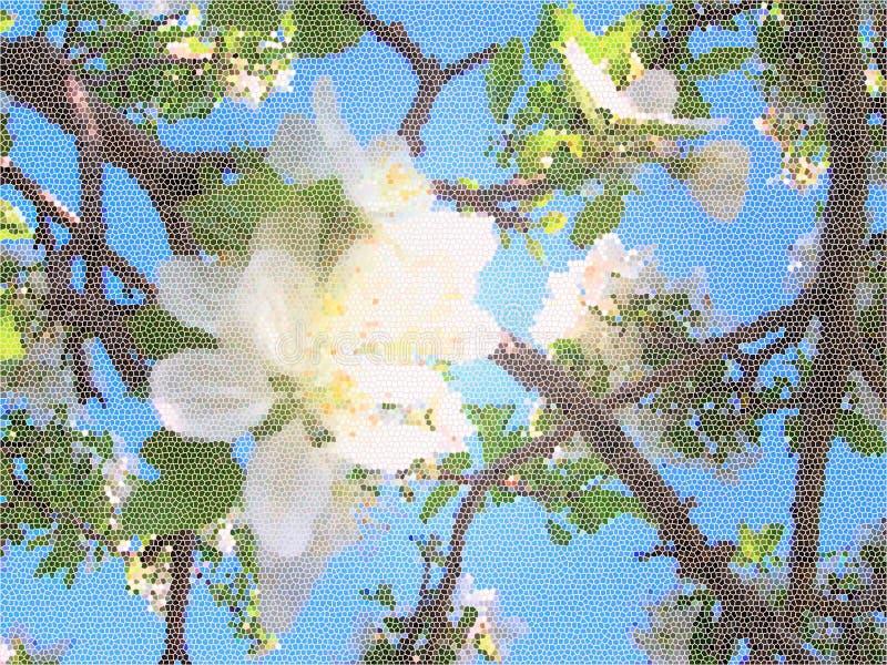 Apple tree blossom vector illustration