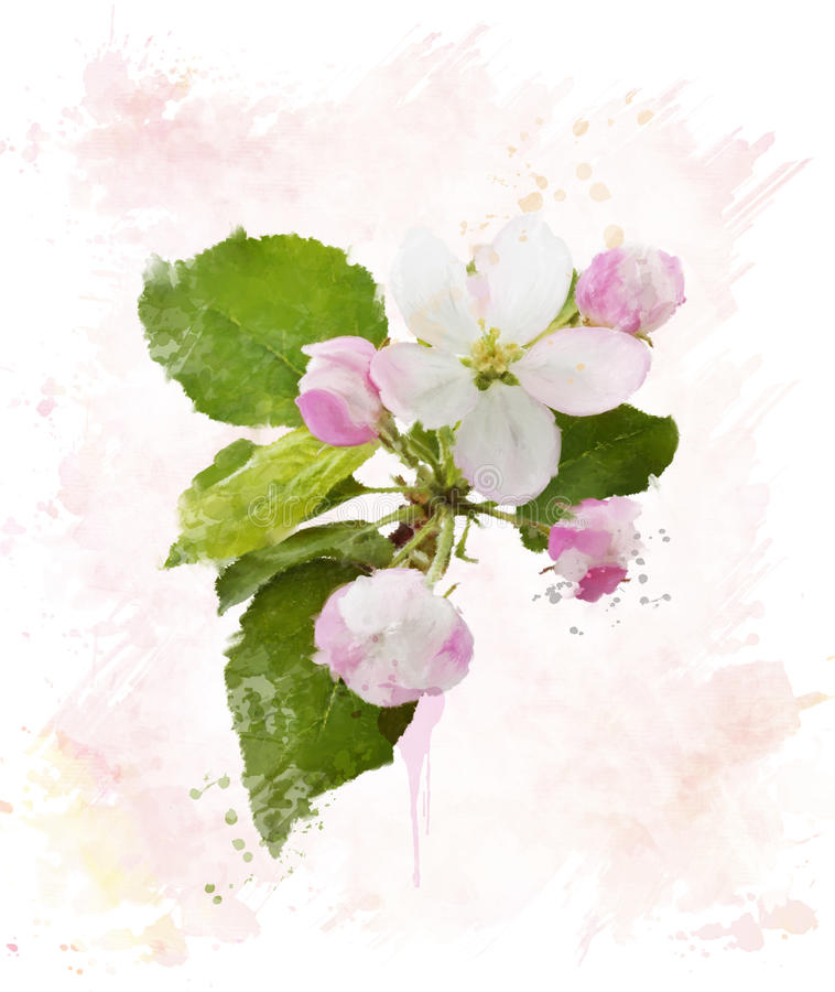 Apple blossom branch painting
