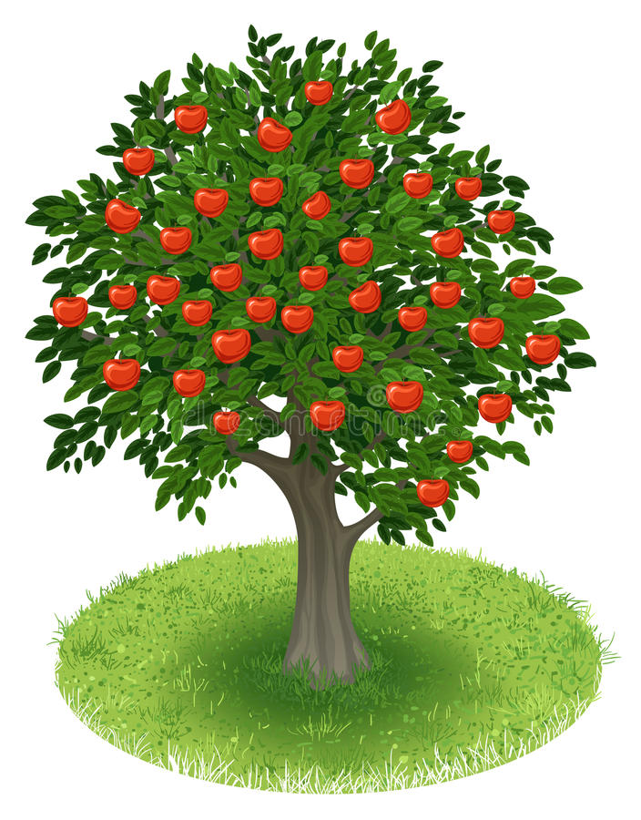 Apple Tree in green field stock illustration