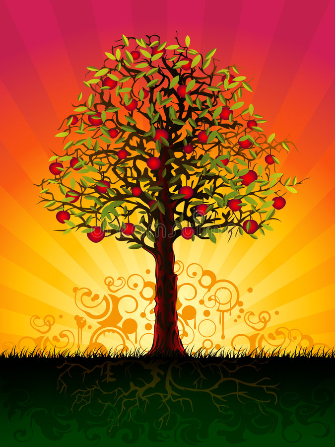 Free Apple Tree In The Evening Stock Photography - 8167732
