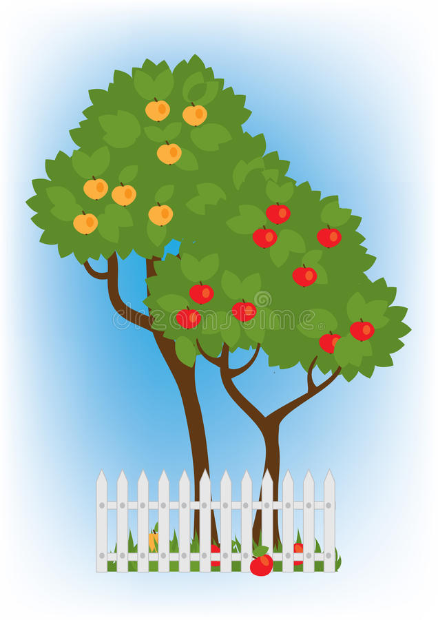 Apple trees in the garden. Two apple trees with mature red and yellow apples vector illustration