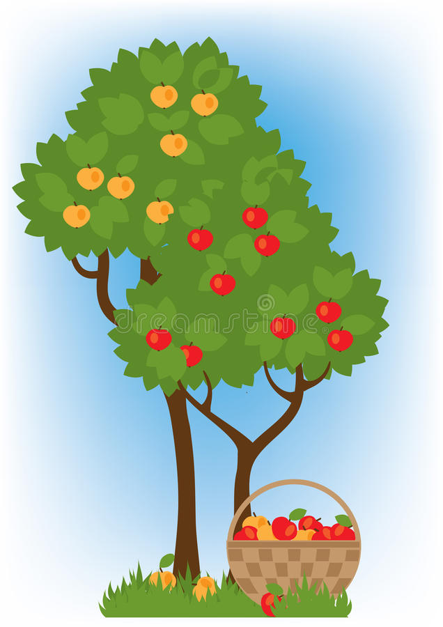 Apple trees in the garden. Two apple trees with mature red and yellow apples royalty free illustration