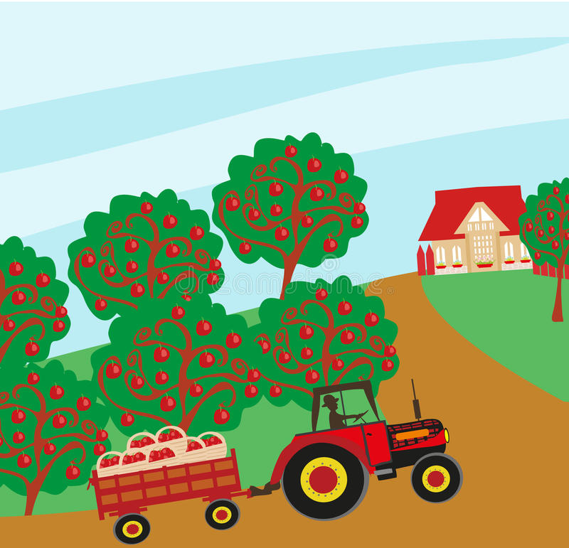 Apple trees and man driving a tractor. Landscape with apple trees and man driving a tractor with a trailer stock illustration