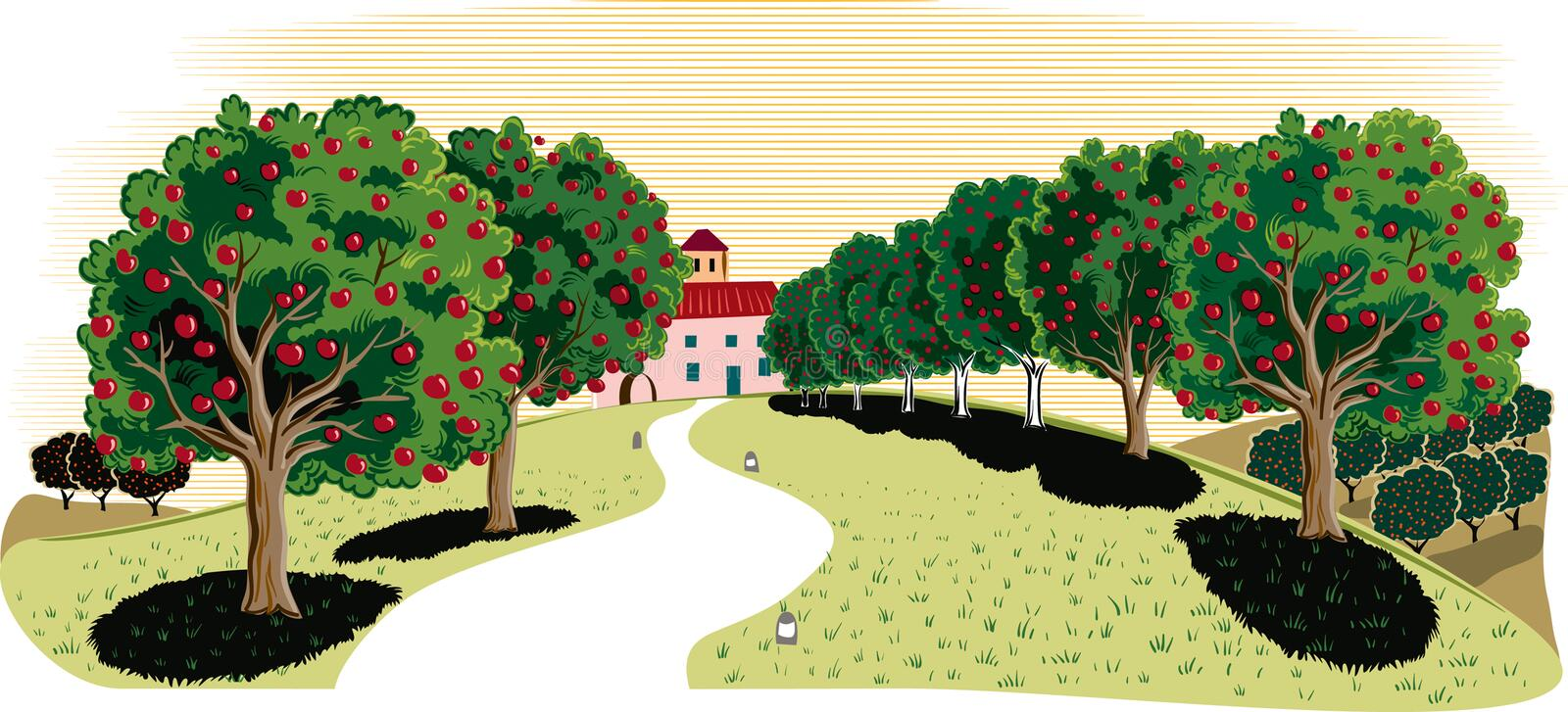 Apple trees in an orchard,. With an agricultural landscape in the background stock illustration