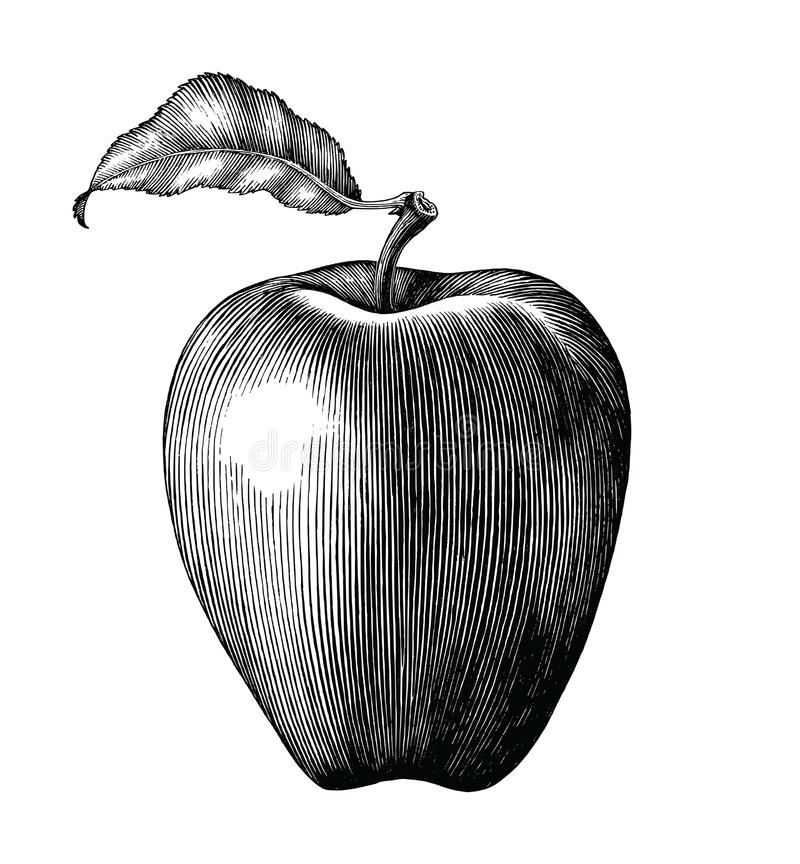 Apple-uitstekende die de klemkunst van de fruittekening op witte backgroun wordt geïsoleerd vector illustratie