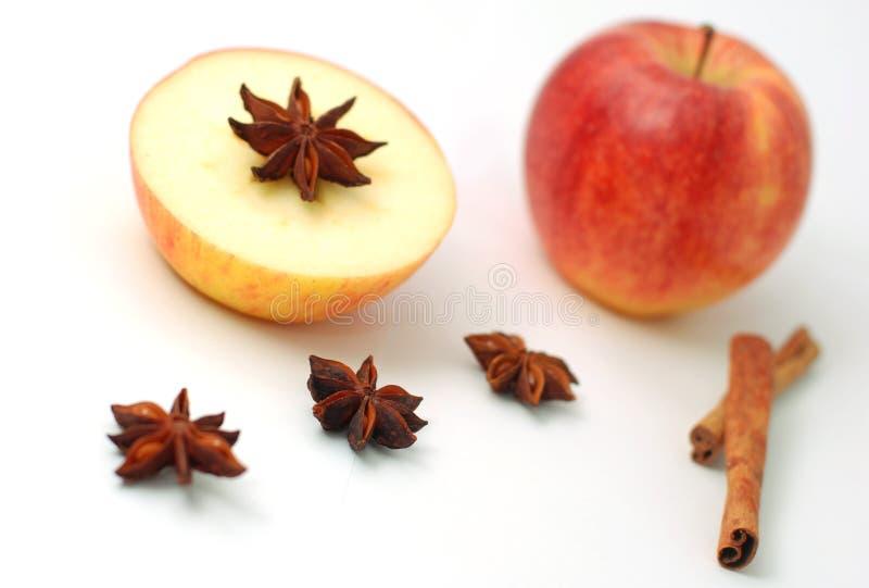 Apple und Wintergewürz lizenzfreies stockfoto