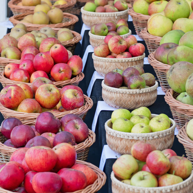 Free Apple Varieties On Display UK Stock Photography - 86595612