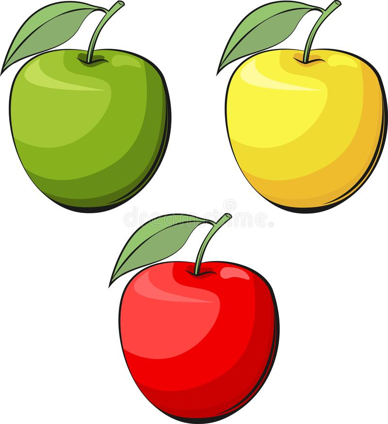 Apple vector illustration. Yellow, green and red apple.  Food illustration. royalty free stock photography