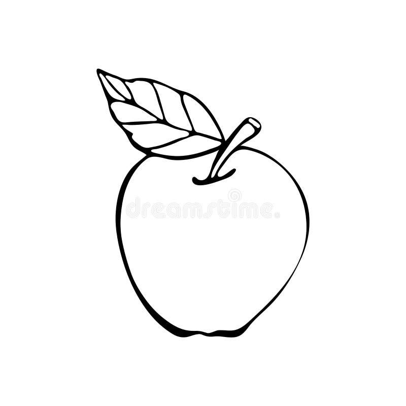 Apple-Vektorzeichnung in Schwarzweiss, Handzeichnungslinie Getrennte Nachricht auf wei?em Hintergrund Hand gezeichneter Skizzenve lizenzfreie abbildung