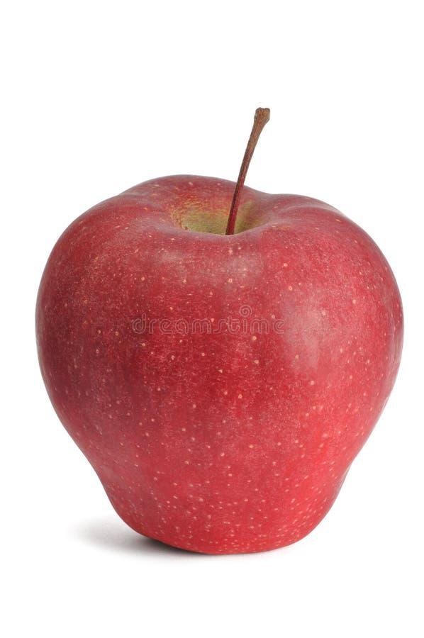 Apple vermelho foto de stock
