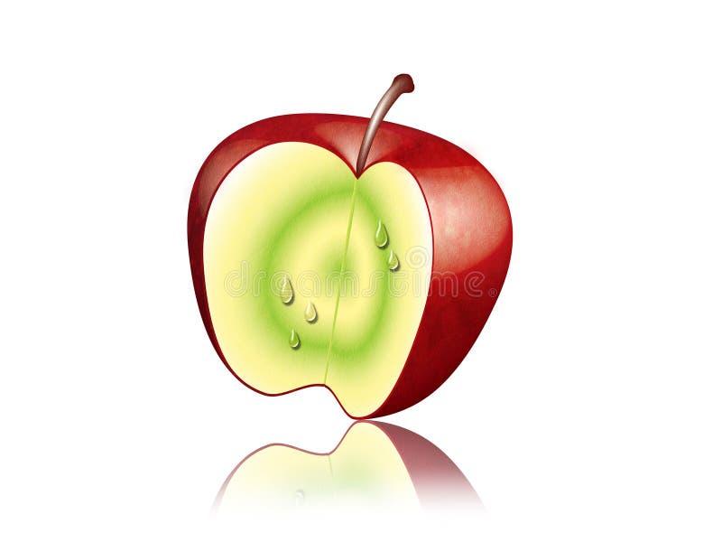 Apple vermelho. fotos de stock