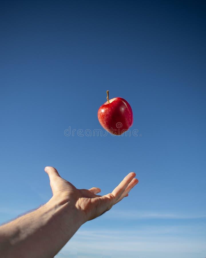Apple vermelho que flutua no ar fotografia de stock royalty free