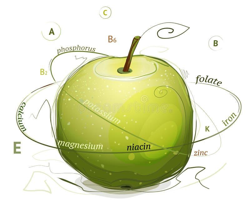 Apple vitamin- och mineralillustration royaltyfri illustrationer