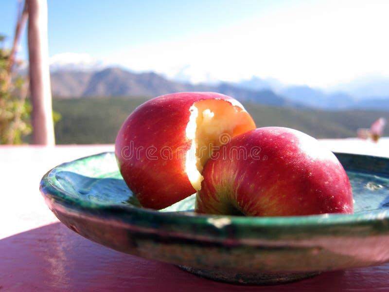 Apple voor dessert, Atlasbergen royalty-vrije stock afbeelding