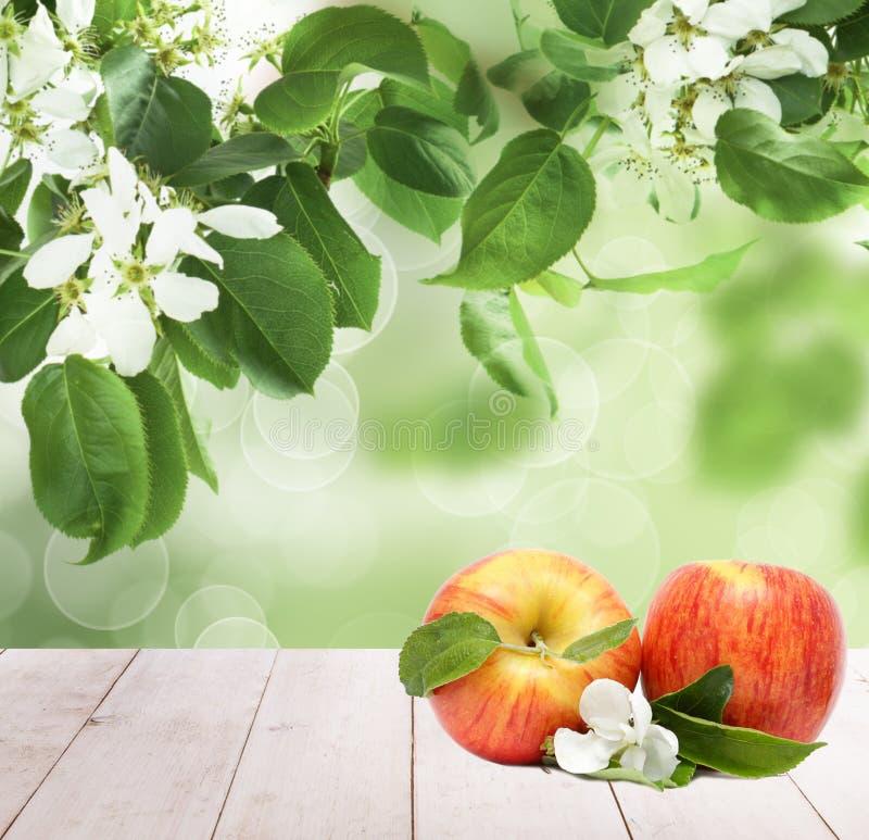 Apple-vruchten op witte houten raad tegen abstracte groene bladeren en bloemenachtergrond stock foto