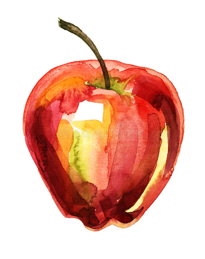 Apple Watercolor Illustration Royalty Free Stock Image