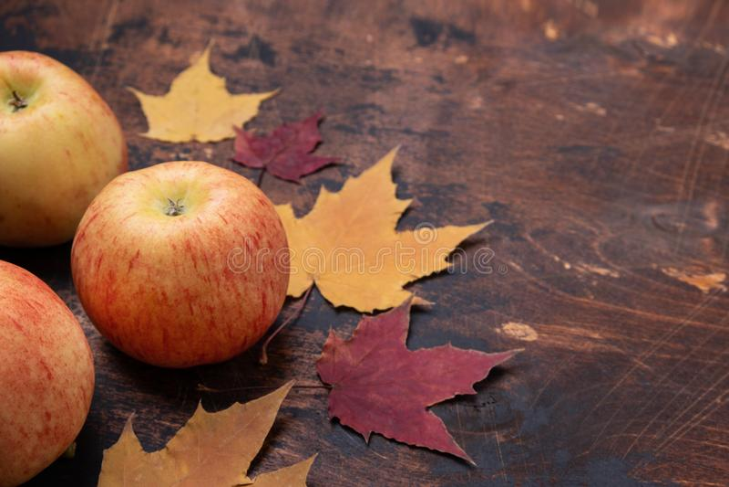 Apple y las hojas de arce rojas amarillas sale viejo grunge de tema de madera de la escuela de la estación del concepto del otoño fotos de archivo