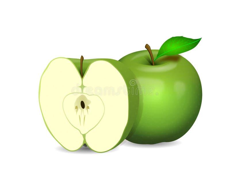 Apple y mitad en verde en un fondo blanco libre illustration